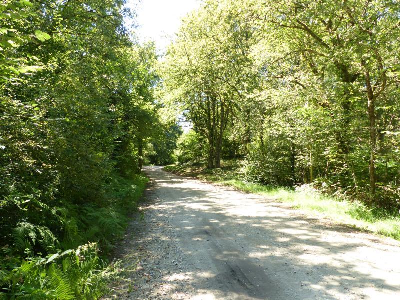 Chemin de Granveau
